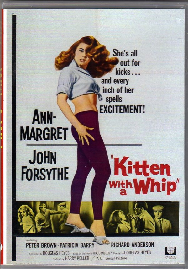 Kitten-with-whip001
