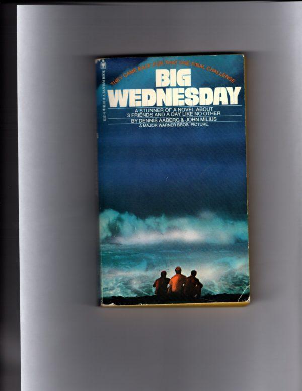 big wednesday paperback (2)